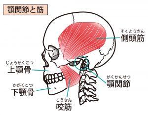 顎関節症 眼精疲労 歯ぎしり 噛みしめ